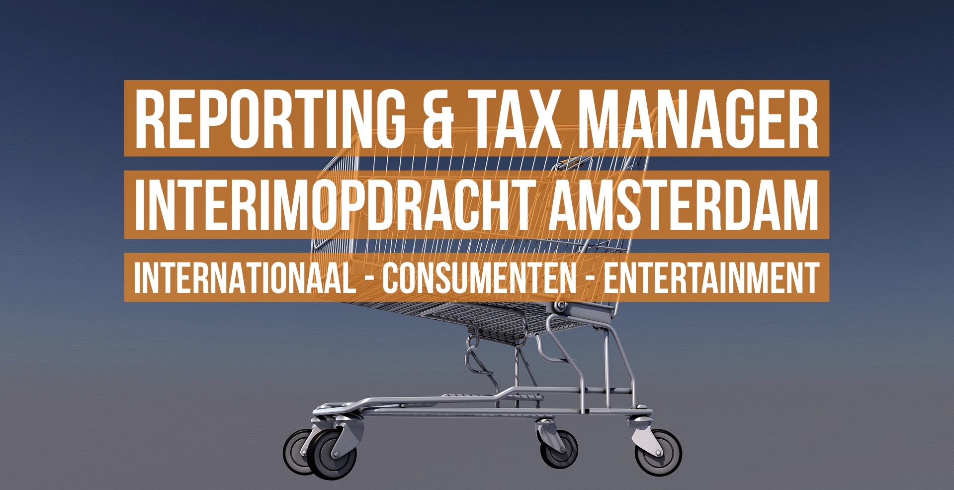 Interim Manager Reporting and Tax vacature Amsterdam