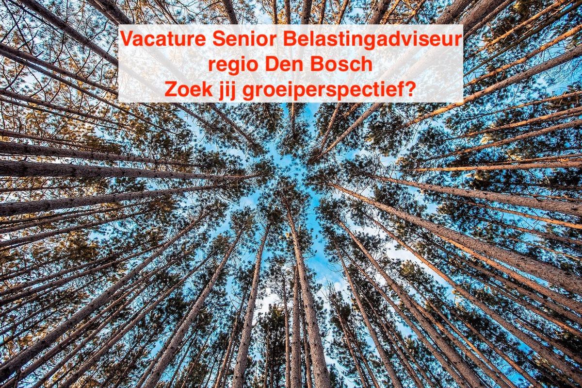 Senior Belastingadviseur ben jij op zoek naar groei vacature Den Bosch